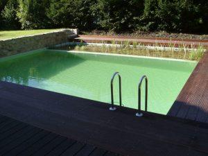 Schwimmteichanlage-15