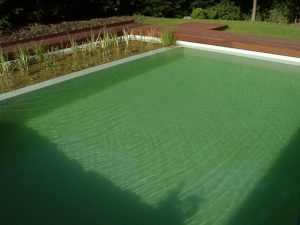 Schwimmteichanlage-19