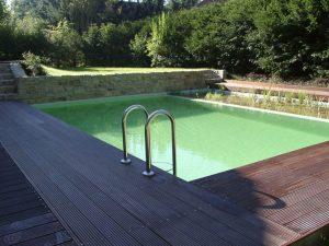 Schwimmteichanlage-6